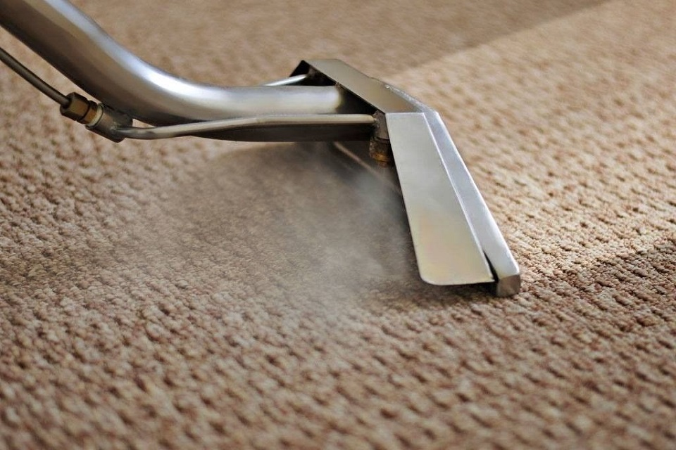 Carpet Steam Cleaning - Cleaning Today